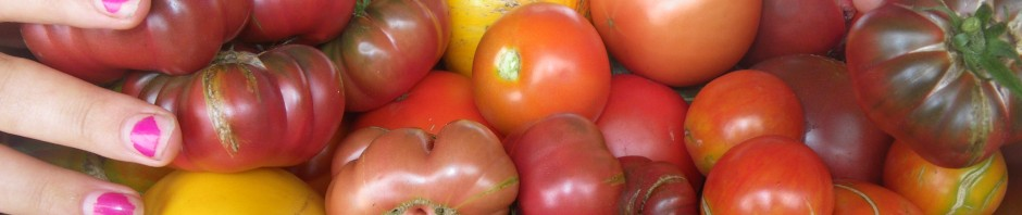 cropped-tomatoes-fingernails1.jpg