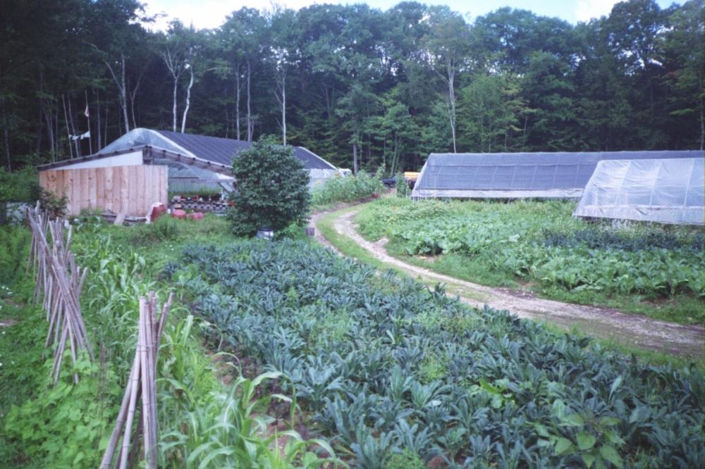 The Farm - No Till