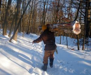 ricky tree carry 2